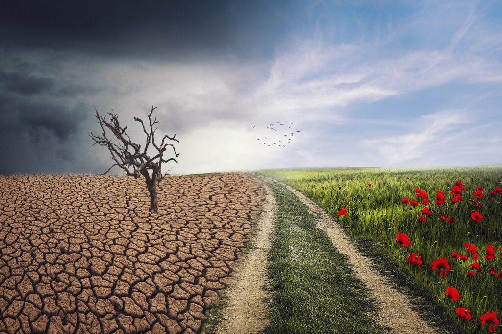 Landscape Change Climate Nature  - enriquelopezgarre / Pixabay